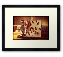 Cockroach Love Hate Living Situation Framed Print