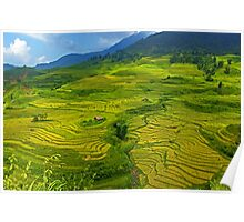 Rice Terrace4. Poster