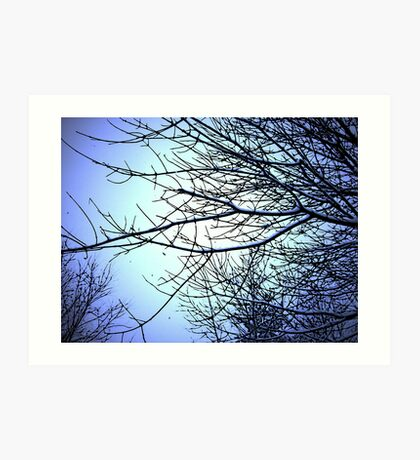 Comic Abstract Tree in Radient Blue Snow Art Print