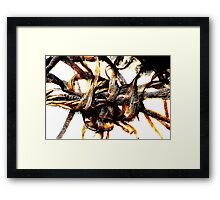 Holding On To Love Framed Print