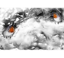 Traditional Christmas Illustration: Robins on a Snow-covered Wall Photographic Print