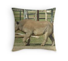 The New Addition Throw Pillow