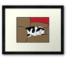 Sleeping Black and White Cat Framed Print