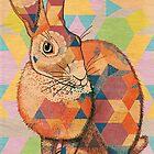 Rabbit by Drawstring