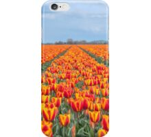 Dutch Tulips part 8 iPhone Case/Skin