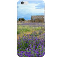 Outback wildflowers iPhone Case/Skin