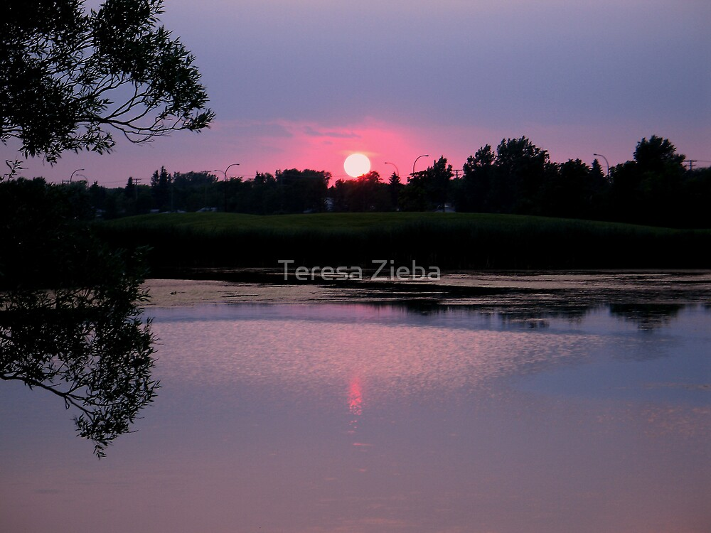 A Moment in Time by Teresa Zieba