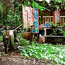 Rainforest Dwelling by Mark Wilson