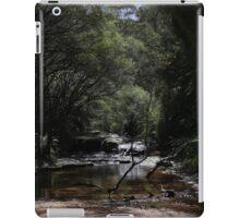Blue Mountains Creek NSW Australia iPad Case/Skin