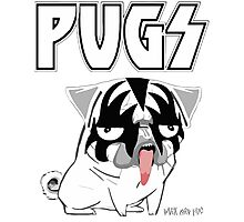 kiss pug Photographic Print