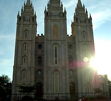 The Mormon Temple by Tim Ray