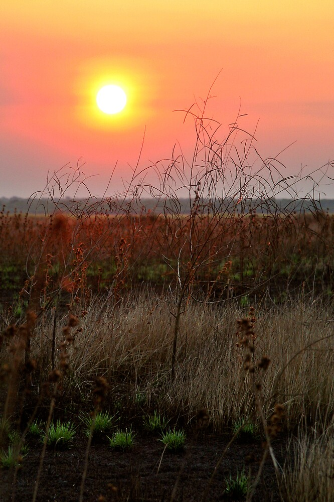 Sunset through the smoke of a grass fire  by Martin Pot