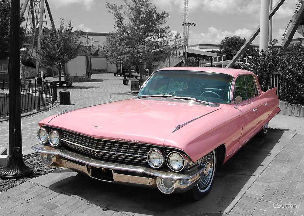 Pink in mono by CSutton