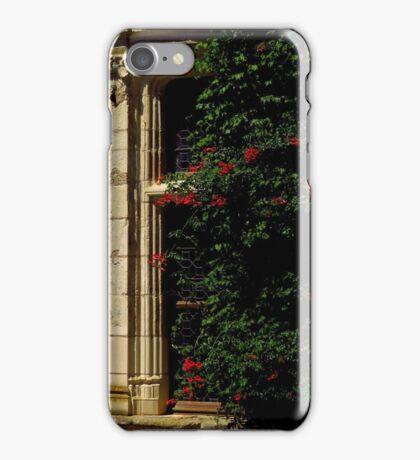 Hidden Window iPhone Case/Skin
