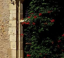 Hidden Window by artisandelimage