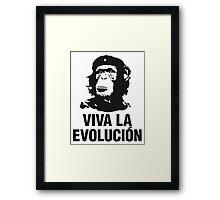 Evolucion Framed Print