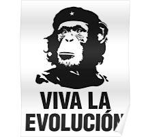 Evolucion Poster