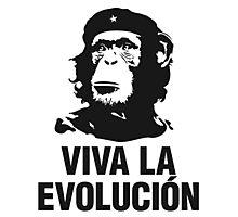 Evolucion Photographic Print