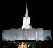 Jordan River Temple by Dani LaBerge