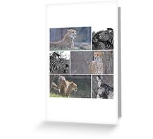 Stalking Stripes Greeting Card