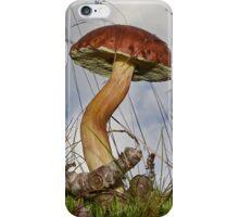 Xerocomus badius iPhone Case/Skin