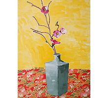 cherry blossum in vase Photographic Print