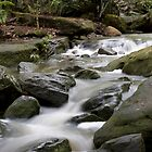 Cool Running - Water by norgan