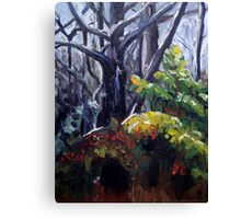 Under Cover Canvas Print