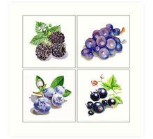 Black And Blue Vitamins Art Print