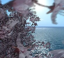 By The Sea by Shoshana Epsilon