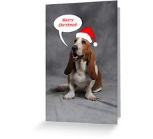Christmas Basset Greeting Card