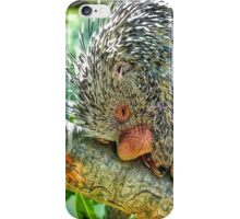 Snuggly when He's Sleeping iPhone Case/Skin