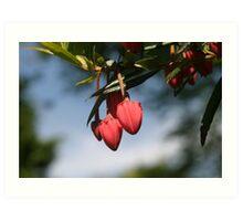Pink Hearts Art Print