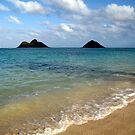 Mokulua Islands by karolina