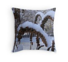 Hyssop seed heads in Snow Throw Pillow