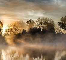 The Morning Sun and Mist by annelacy