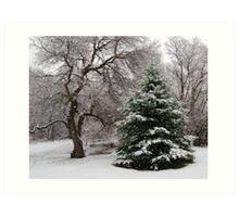 Mother Natures Christmas Tree Art Print