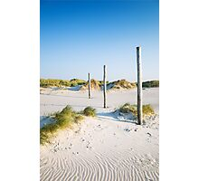 coastal dune Sankt Peter-Ording Photographic Print