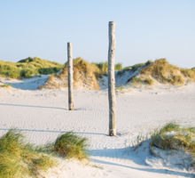 coastal dune Sankt Peter-Ording Sticker