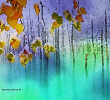 Winter Reflections by Bunny Clarke