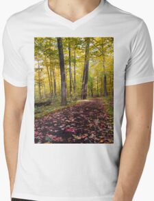 A Walk Along the Path Mens V-Neck T-Shirt