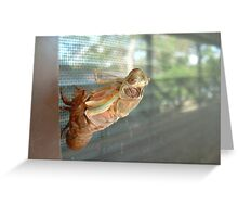 The Hatching 1 Greeting Card