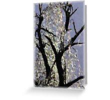Ice On Tree Greeting Card