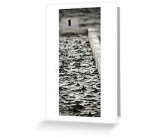 Segment - Merewether Ocean Baths, East Coast Australia Greeting Card