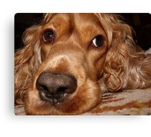 MY NOSE IS BIG ? :) Canvas Print