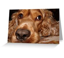 MY NOSE IS BIG ? :) Greeting Card