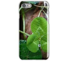 Collection Plates iPhone Case/Skin