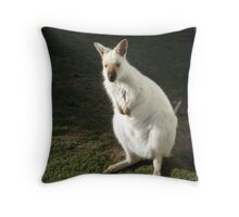 White Wallaby Throw Pillow
