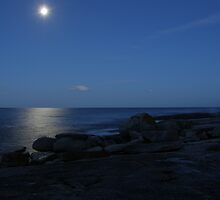 Moon Lit Blue by ThomasMcG