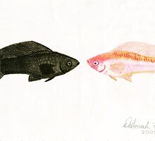 Ebony & Ivory(colored pencil) by Deborah Duvall